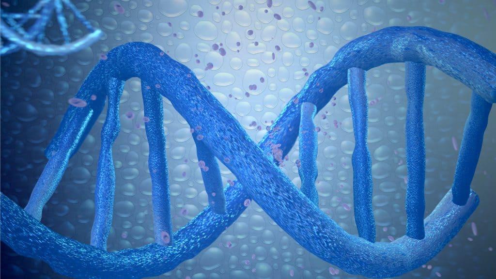 DNK manipulacije